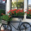 Flower box bike. You see potted flowers in every type of container on every available surface.