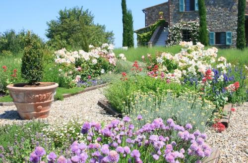 PP garden 1