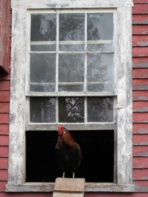 farmhouseInnVermont
