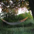 The hammock, surrounded by wildflowers on three sides.